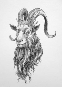 Aug 11 King Puck - Goat